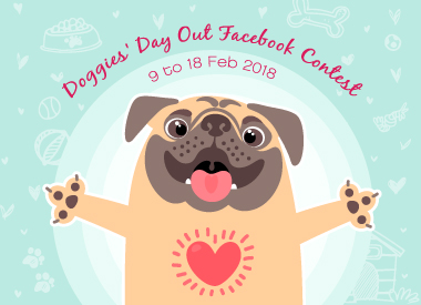 Doggies' Day Out Facebook Contest